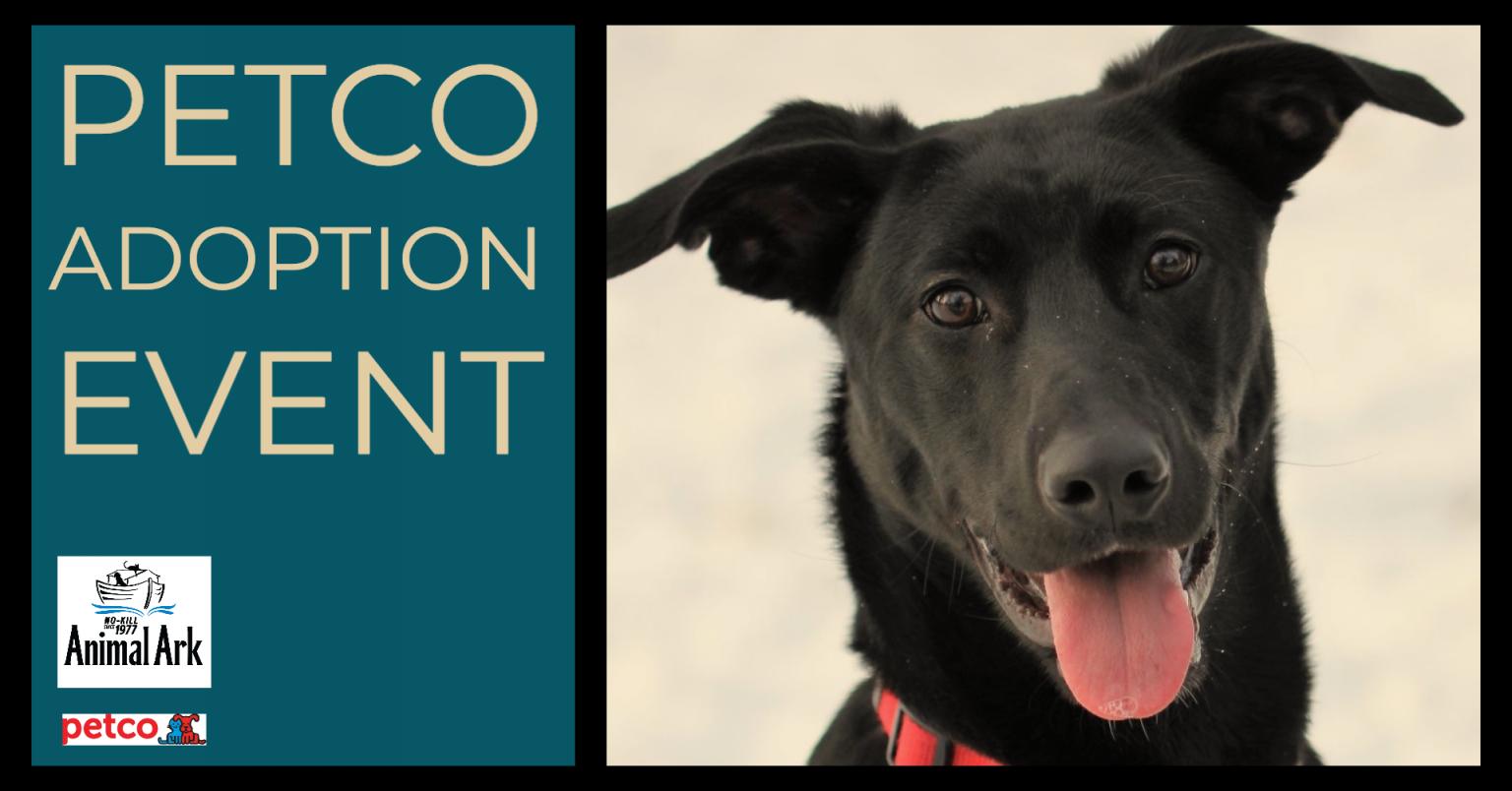 Petco Adoption Event Saturday Eagan Animal Ark