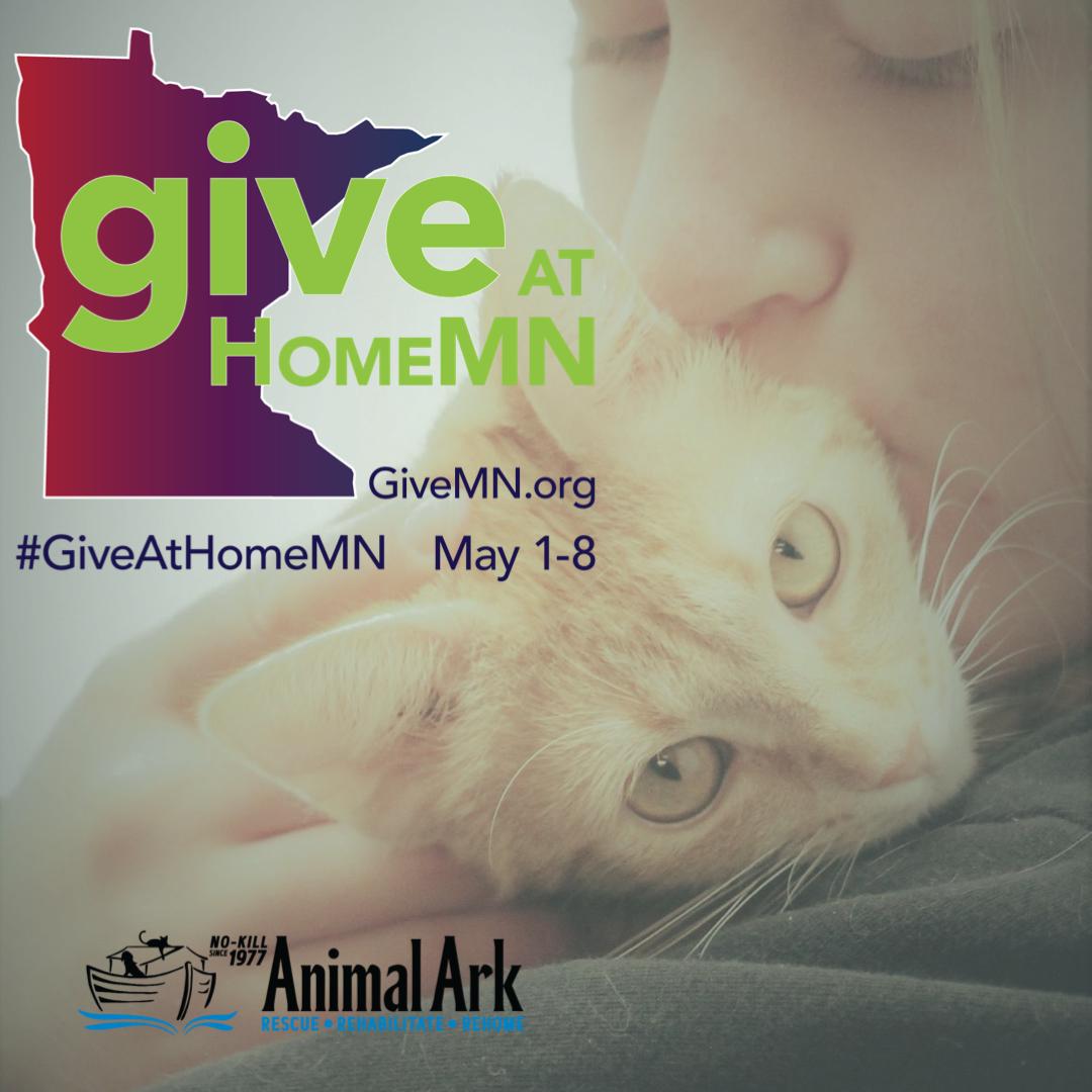 #GiveAtHomeMN: May 1-8.